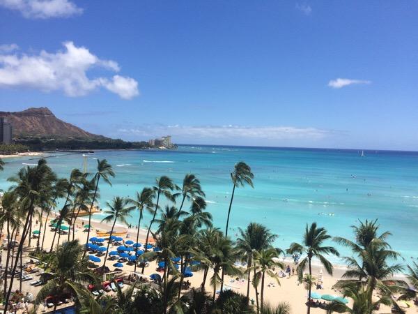 新規投資案件交渉&視察のためハワイに来ています。